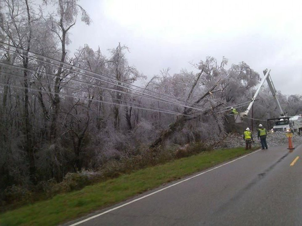 Crews working to remove fallen tree from Colleton Co. power lines. (Source: Julie Ann Kinard)