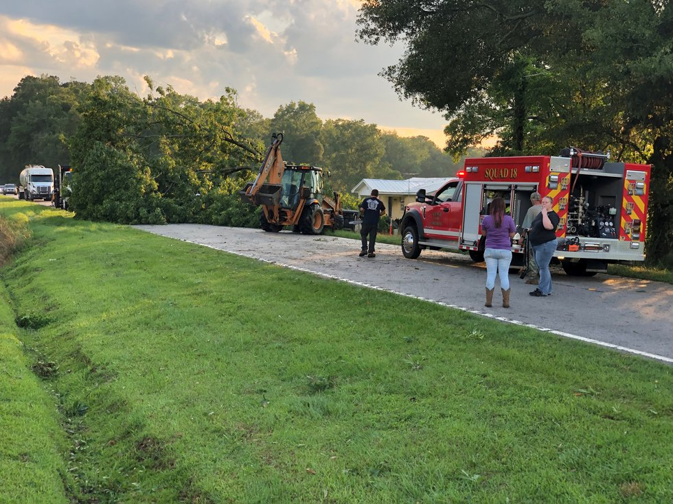 Emergency crews working a downed tree on Branchdale Highway in Holly Hill on Tuesday evening.