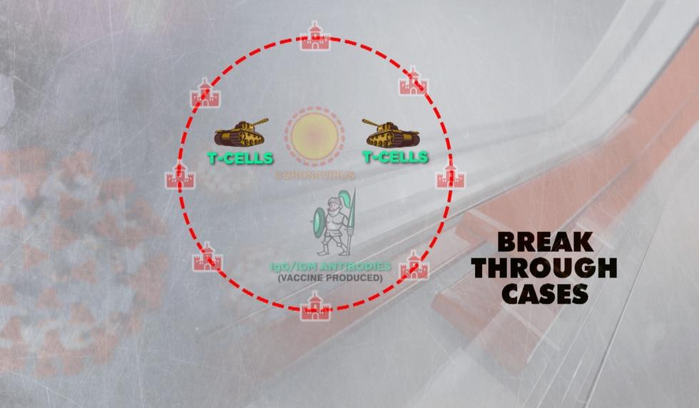 Breakthrough cases