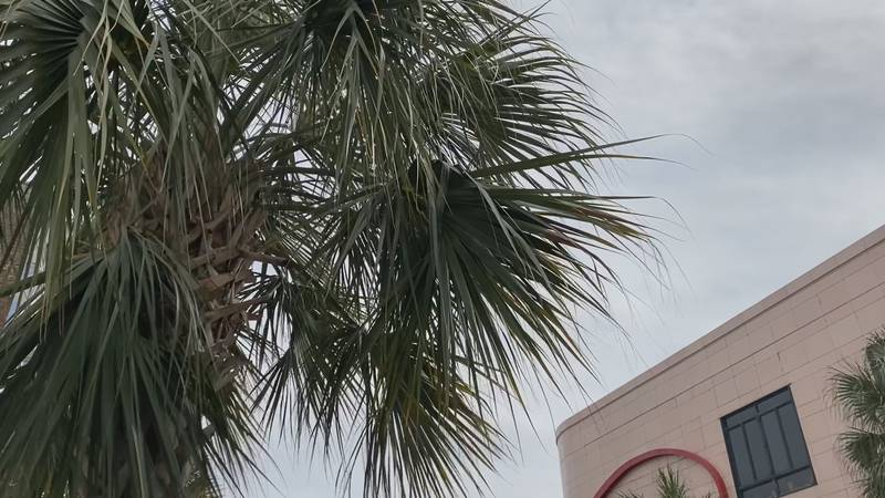 The City of Charleston has crews on standby in the case of severe weather on Thursday.