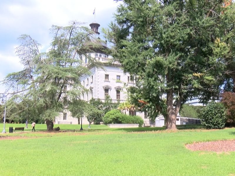 State auditors will soon be looking into the South Carolina Department of Disabilities and...