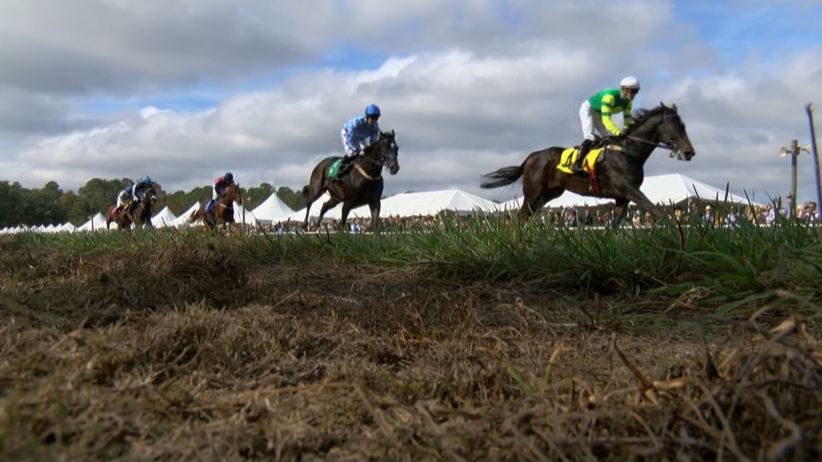 The annual equestrian event, Steeplechase of Charleston, is happening Sunday at the Stono Ferry...