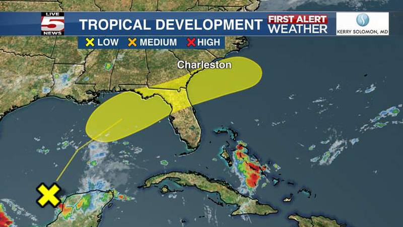 A disturbance near the Yucatan Peninsula and south-central Gulf of Mexico could develop enough...