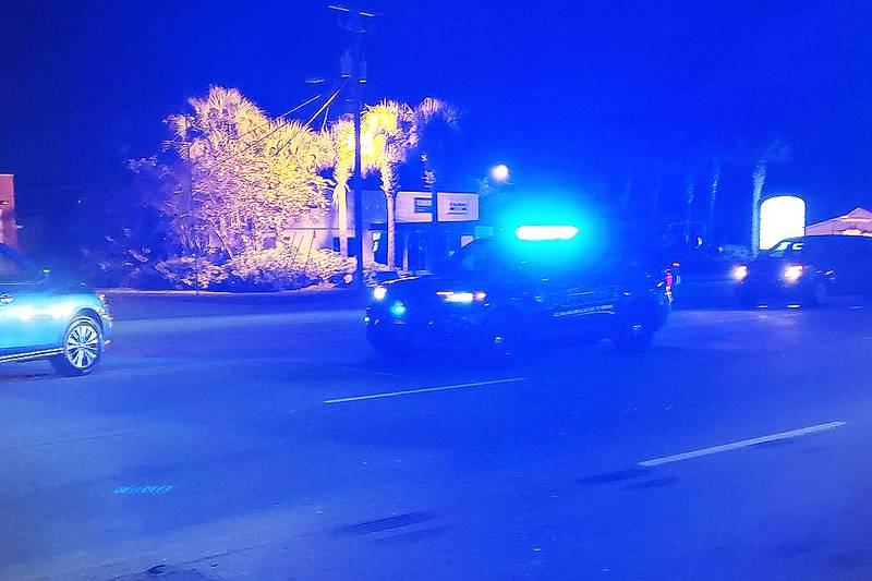 Charleston police say one person is dead following an auto pedestrian crash on Savannah Highway...