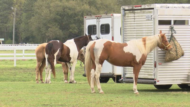 .A mounted search and rescue seminar took place on Johns Island.