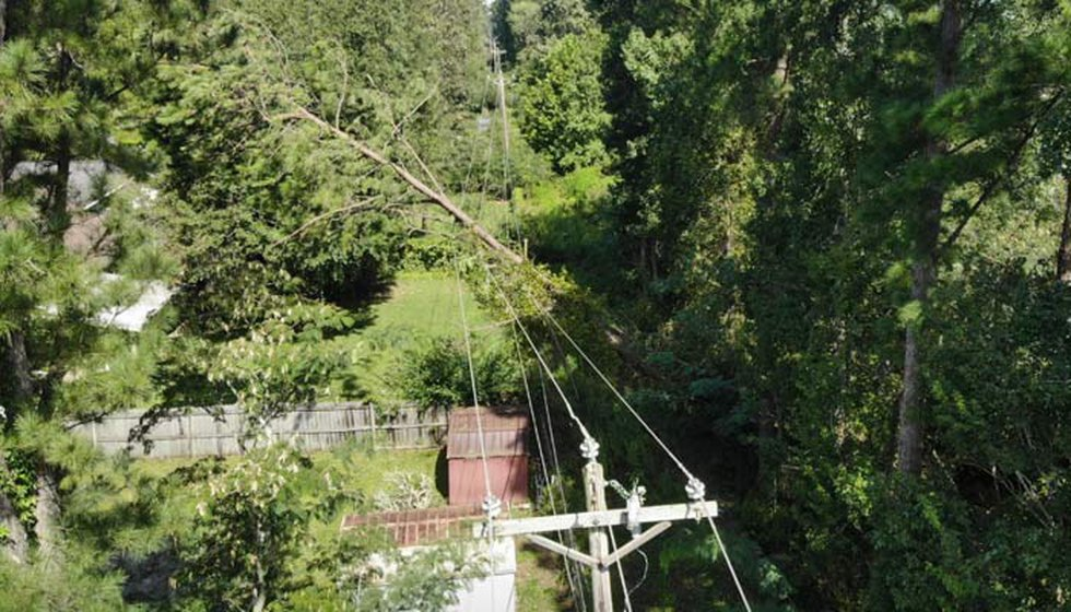Hurricane Dorian knocked trees down across power lines, causing widespread power outages across...