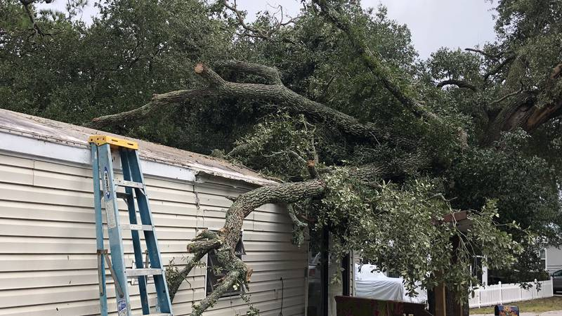 The remnants of Tropical Storm Nestor damaged two homes in one Myrtle Beach neighborhood early...