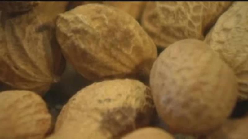 Locating in Orangeburg County, McMaster says Premium Peanut's new facility will provide more...