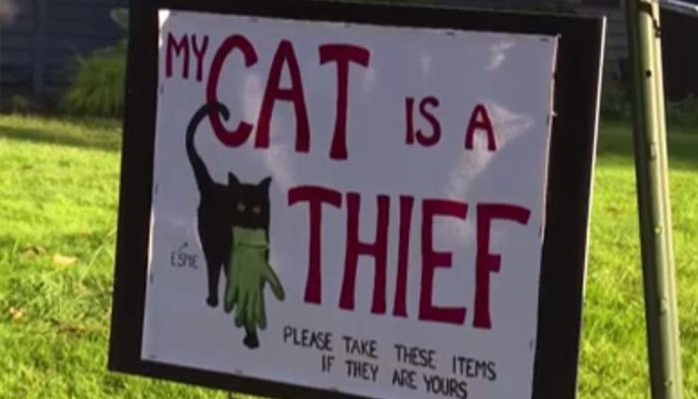 Kate Felmet made a sign letting the neighborhood know her cat is a thief and people should come...