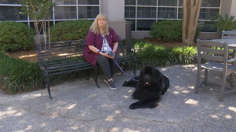 Lisa Schiller sits with her dog, Abraham, who volunteers at Summerville Medical Center.