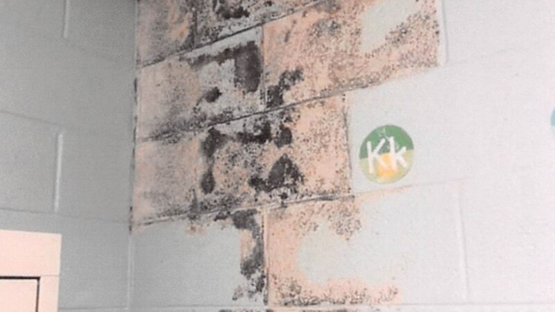 A photo of mold was submitted as an exhibit in a lawsuit filed against Horry County Schools and...