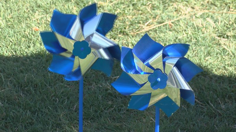 The pinwheels are part of National Child Abuse Prevention Month and represent the goal of...
