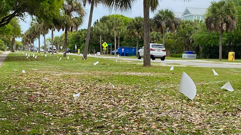 Leaders on the Isle of Palms are looking to move forward with a parking plan that would add...