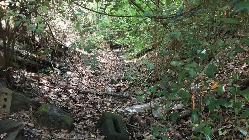 A drainage ditch went ignored for 70 years because of a lost document, the City of Charleston...