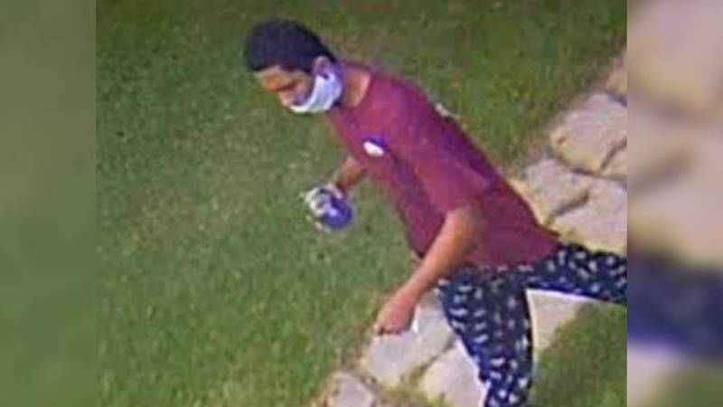 One homeowner in Whitehall was able to get video of the suspected thief on his surveillance...