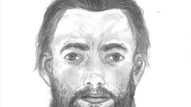 Sketch of the suspect (Source: CPD)