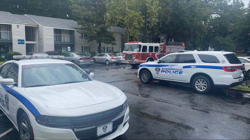 The apartment complex is reportedly called the Summerville Station Apartments