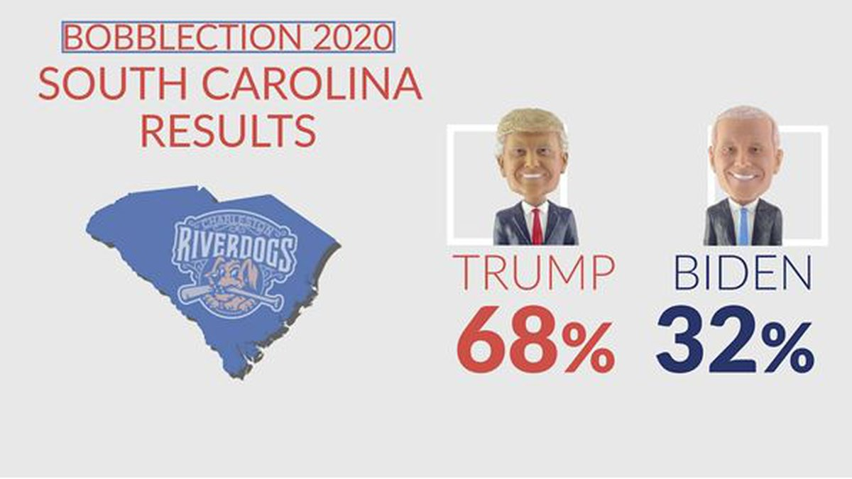 President Trump defeated Joe Biden in the RiverDogs Bobblection the team announced on Tuesday